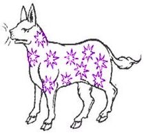 Purple-Spangled Pantheon
