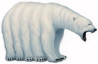 Qupqugiuq (10-legged polar bear)
