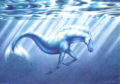 Ocean horse by in the distance (hippocampus hippocampos hippokampos hippo campus camp sea ocean water horse seahorse oceanhorse waterhorse mythology Poseidon Neptune)-1-