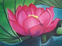 Cindy-curren-japanese-lotus-flower-toren-1-