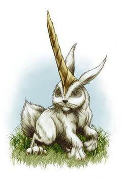 Bunny rabbit al miraj