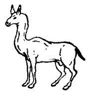 Allocamelus-heraldry