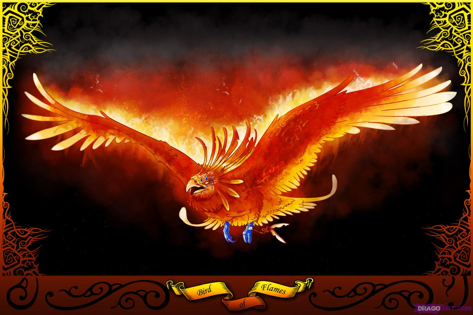 image how to draw a phoenix bird of flames jpg warriors of myth