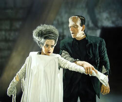 Miller-Bride-of-Frankenstein-1-