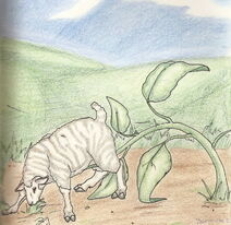 Sheep Plant by Luna Ortis