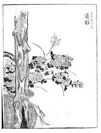 200px-Sakabashira