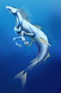 Hippocamp hippocampus swimming-1-