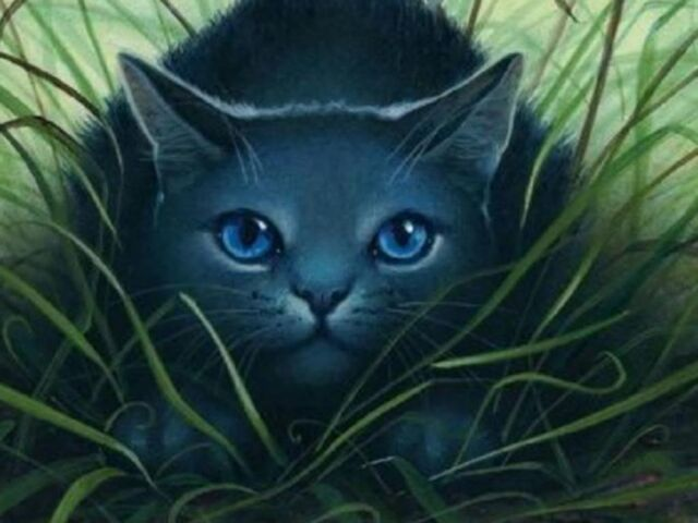 File:Bluestar-warrior-cats.jpg