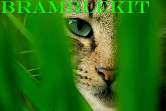 Bramblekit