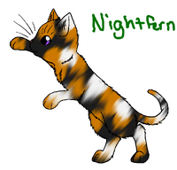 Nightfern.TH