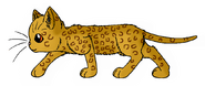 Leopardclaw.A.LC