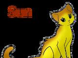 Sun(TNC)