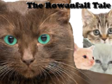 The Rowanfall Tale