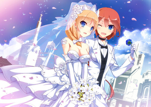 Nelson class marriage