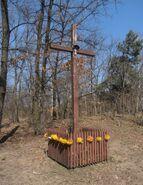 Chlubna, Deseniowa (krzyż)