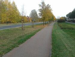 Ścieżka Rosołą (by BartekBD)