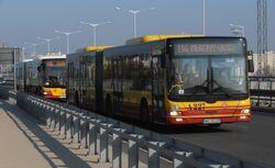 Toruńska (autobus 114)