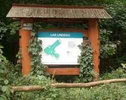 Lasek Lindego (tablica informacyjna)