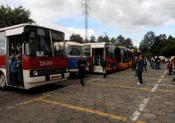 Woronicza (nr 29, Dni Transportu Publicznego 2013)