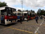 Dni Transportu Publicznego