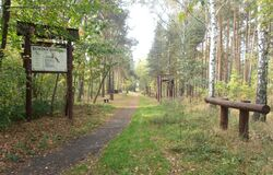 Park im. Matki Mojej (Strusia)
