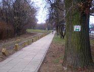 Marymoncka (zielony szlak rowerowy)