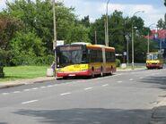Olszynka