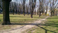 Park Inwalidów park
