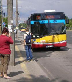 Dolina Służewiecka (autobus 117)