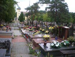 Cmentarz w Aleksandrowie (Zlotej Jesieni) 2