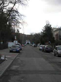 Niegolewskiego