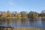 Park Skaryszewski staw