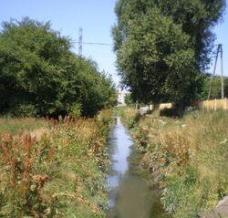 Potok Służewiecki (Przy Grobli, Arbuzowa)