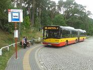 519 (Powsin-Park Kultury)