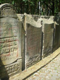 Cmentarz Żydowski na Bródnie (aleja główna 3)