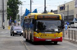 Aleja Solidarności (autobus 516)