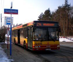 Klasyków (autobus 214)
