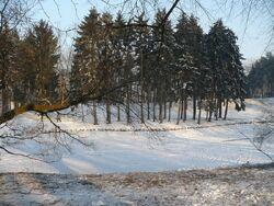 Park Skaryszewski Staw zima