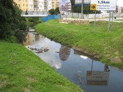 Kanal Brodnowski