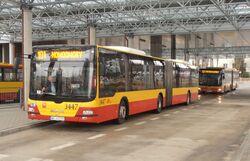 Metro Młociny (autobus 101)