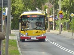 Autobus 196 (Al. Komandosow)