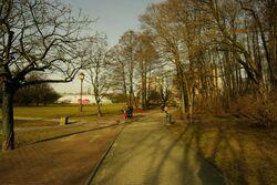 Park Olszyna