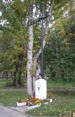 Sternicza, Powstańców Śląskich (krzyż)
