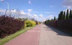 Światowida (ścieżka rowerowa)