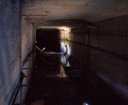 Mieszka I (nr 1, tunel południowy)
