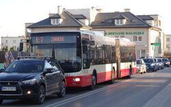 Skarbka z Gór (autobus E-7)