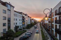 Wilanow1 Linearny Czerwiec 2015 fot