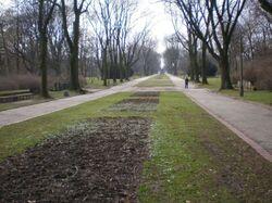 Park Skaryszewski (główna alejka)