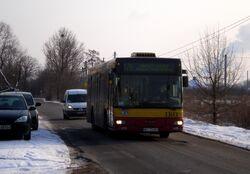 Waligóry (autobus 176)