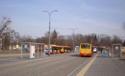Cmwolski